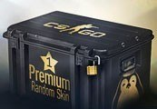INOpets.com Anything for Pets Parents & Their Pets CS:GO 1 Premium Random Skin | Kinguin Case