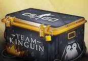 INOpets.com Anything for Pets Parents & Their Pets Team Kinguin CS:GO Skin Case
