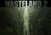 Wasteland 2 Steam Key