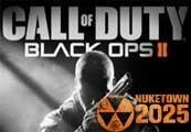 Call Of Duty Black Ops II Uncut Steam Key + Nuketown