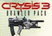 Crysis 3 Brawler Pack + Hunter Edition Content EU PS3 Key