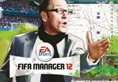 FIFA Manager 2012 Origin Key