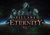 Pillars of Eternity Champion Edition Steam Key
