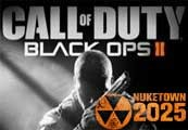 Call Of Duty Black Ops II Uncut + Nuketown Steam Key