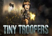Tiny Troopers Steam Gift