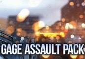 PAYDAY 2: Gage Assault Pack Steam Key