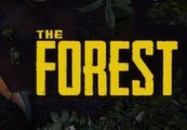 The Forest RU VPN Required Steam Gift