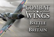 Combat Wings: Battle of Britain Steam Key
