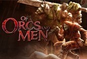Of Orcs And Men Steam Key