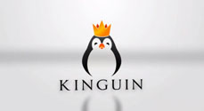 How Kinguin works